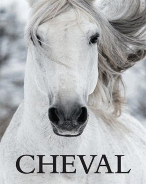 Cheval-parragon-9781472377050