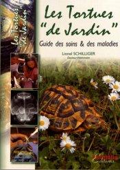 Les tortues de 'jardin'