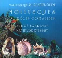 Mollusques du récif corallien