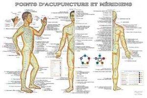 Planche des points d'acupuncture et méridiens avec les indications pathologiques-phu-xuan-2224485495900