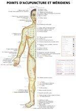 Planches des points d'acupuncture et méridiens-phu-xuan-2224485505739