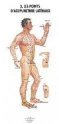 Planches anatomiques des points d'acupuncture des 14 méridiens et des points hors méridiens-phu-xuan-2224485523993