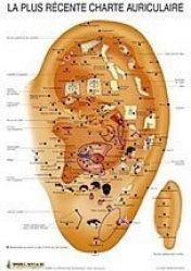 Planche de la plus récente charte auriculaire-phu-xuan-2304489823821