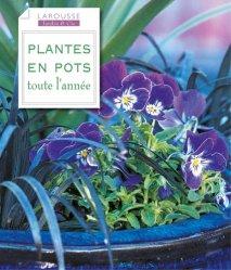 plantes en pots toute l 39 ann e collectif 9782035857217 larousse jardin cie balcons pots. Black Bedroom Furniture Sets. Home Design Ideas