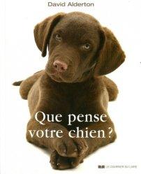 Que pense votre chien ?