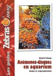 Anémones-disques en aquarium
