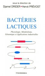 Bactéries Lactiques