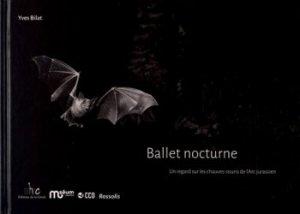 Ballet nocturne