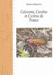 Calosoma, Carabus, et Cychrus de France