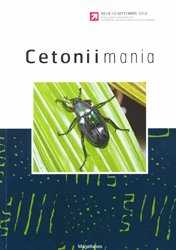 Cetoniimania 13