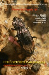 Coléoptères Carabiques