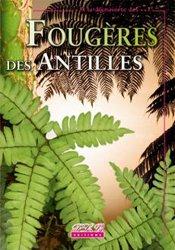 Fougères des Antilles
