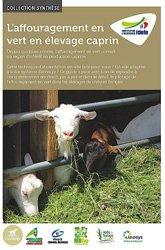 L'affouragement en vert en élevage caprin