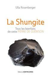 La shungite : tous les bienfaits de cette pierre de guérison