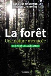 La forêt : une nature menacée