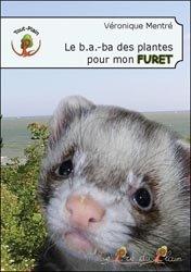 Le B.A.-BA des plantes pour mon furet