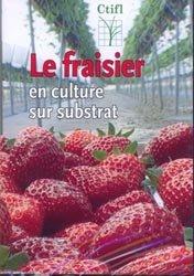 Le fraisier en culture sur substrat