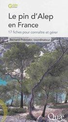 Le pin d'Alep en France
