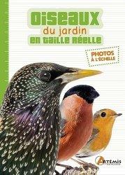 Les oiseaux du jardin en taille réelle