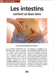 Les intestins : confort et bien-être