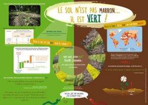 Le sol n'est pas marron... il est vert !