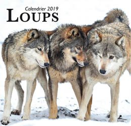 Loups, calendrier 2019