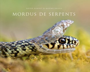 Mordus de serpents