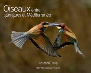 Oiseaux entre garrigues et Méditerranée