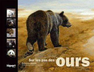 Sur les pas des ours