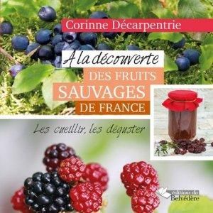 A la découverte des fruits sauvages de France - du belvedere - 9782884194778