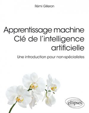 Apprentissage machine Clé de l'intelligence artificielle - ellipses - 9782340028807