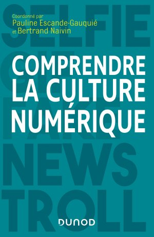 Comprendre la culture numérique-dunod-9782100795840