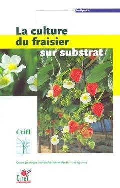 La culture du fraisier sur substrat-ctifl-9782879112022