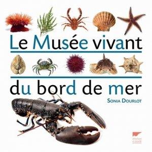 Le Musée vivant du bord de mer - delachaux et niestle - 9782603020005