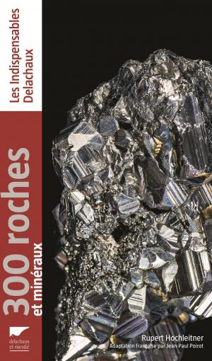 300 roches et mineraux - delachaux et niestle - 9782603026397