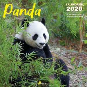 Panda-artemis-9782816015218
