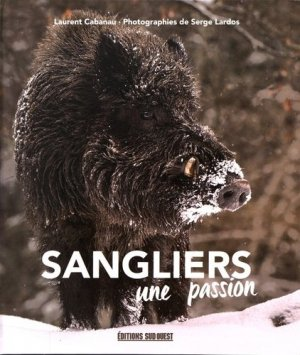 Sangliers-sud ouest-9782817704913