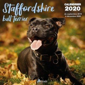 Stafforshire bull terrier - artemis - 9782816015010
