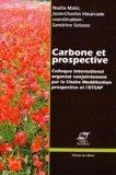 Carbone et Prospective