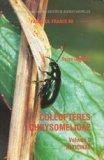 Coléoptères chrysomelidae Volume 2