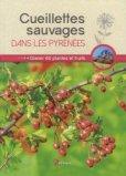 Cueillettes sauvages dans les Pyrénées