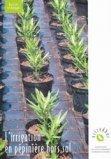 L'irrigation en pépinière hors sol