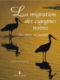La migration des cigognes noires