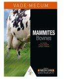 Mammites bovines