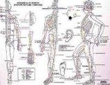 Planche méridiens et points d'acupuncture chinoise