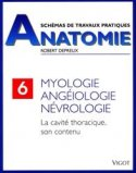 Schémas de travaux pratiques anatomie 6 Myologie, angéiologie, névrologie
