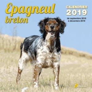 epagneul breton : calendrier 2019 : de septembre 2018 à décembre